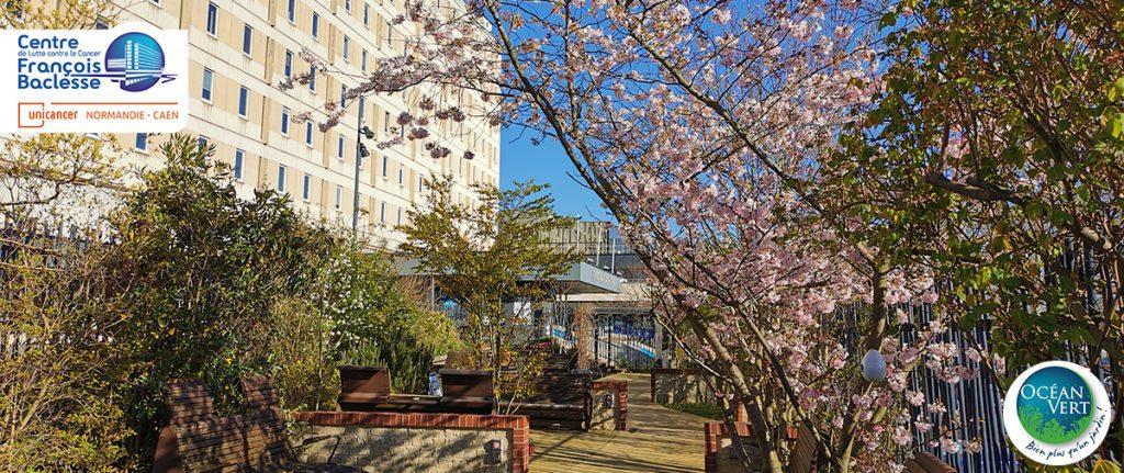 Arbres en fleur dans le jardin thérapeutique