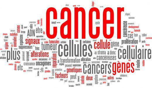 Cancérologie (1) : des bases fondamentales à la pratique quotidienne